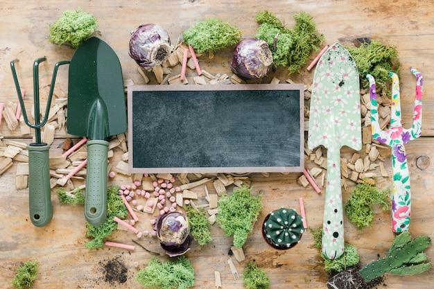 Vue de dessus des équipements de jardinage; gazon; plante de cactus; craie; et ardoise vierge sur table en bois marron Photo gratuit