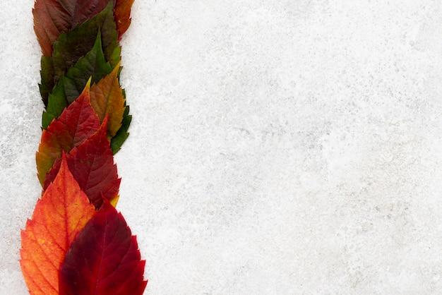 Vue De Dessus Des Feuilles D'automne Colorées Avec Espace Copie Photo gratuit