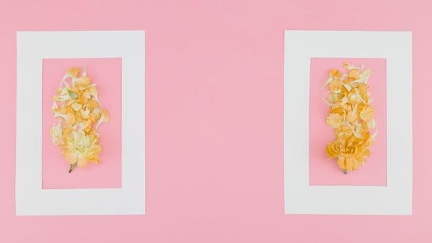Vue de dessus des fleurs avec cadre Photo gratuit