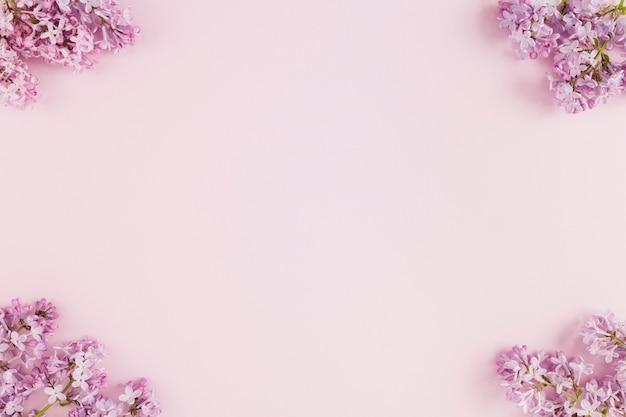 Vue De Dessus Des Fleurs Avec Espace De Copie Photo Premium