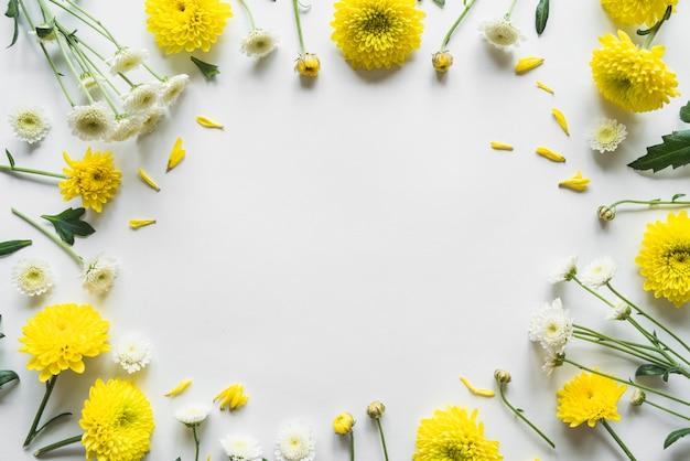 Vue de dessus des fleurs et des feuilles Photo gratuit