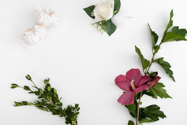 Vue de dessus des fleurs avec un fond blanc Photo gratuit