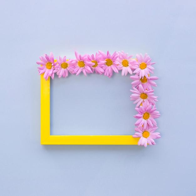 Vue de dessus des fleurs roses disposées sur un cadre photo frontière jaune sur fond bleu Photo gratuit