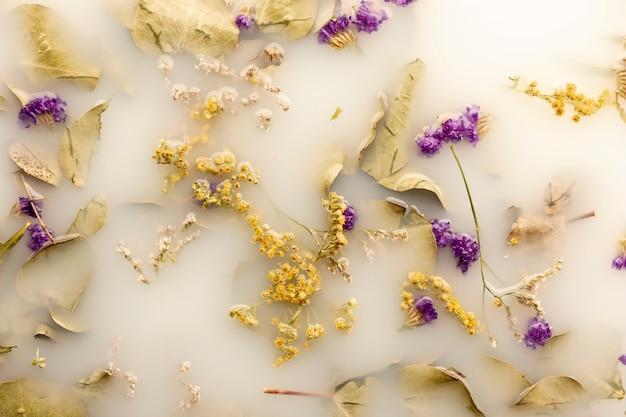 Vue De Dessus Des Fleurs Violettes Dans De L'eau De Couleur Blanche Photo gratuit