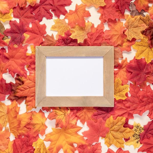 Vue de dessus sur fond de feuilles Photo gratuit