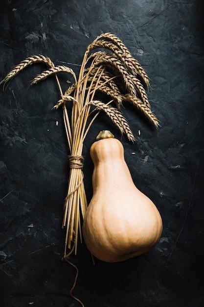 Vue de dessus frais courge butternut et grains Photo gratuit
