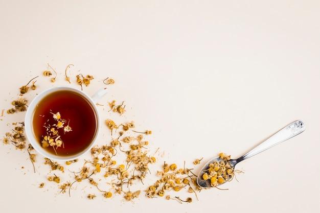 Vue de dessus des herbes de thé rafraîchissantes Photo gratuit