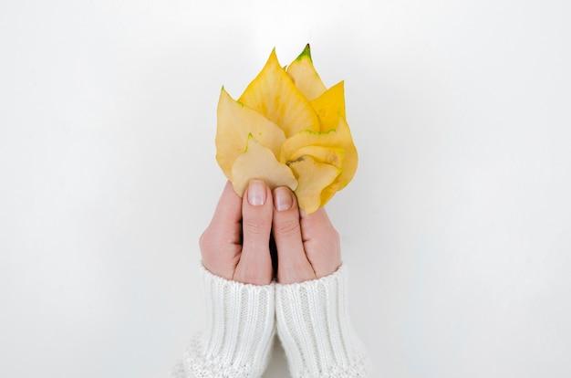 Vue de dessus mains tenant des feuilles d'automne Photo gratuit