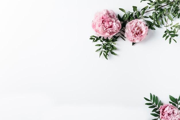 Vue de dessus des oeillets roses Photo gratuit