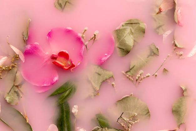 Vue de dessus des orchidées et des roses dans de l'eau colorée rose Photo gratuit