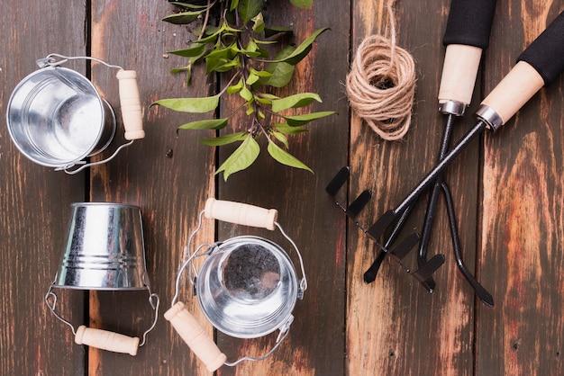 Vue de dessus des outils de jardinage et des plantes Photo gratuit