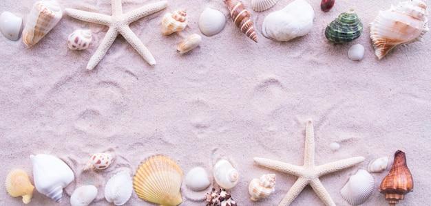 Vue de dessus, plage et coquille Photo Premium