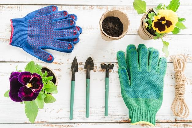 Une vue de dessus de pot de tourbe de fleur de pensée avec mini équipement de jardinage sur un bureau en bois Photo gratuit