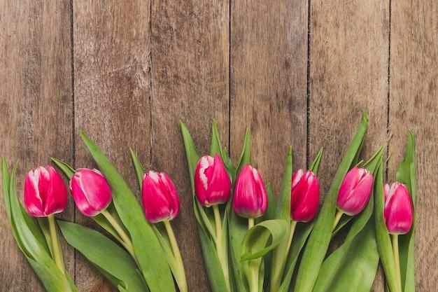 Vue de dessus de tulipes dans la rangée Photo gratuit