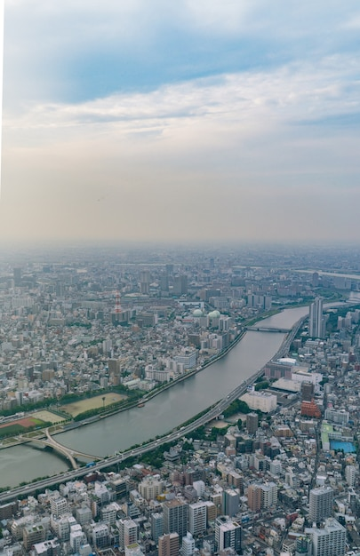 Vue De Dessus De La Ville De Tokyo Au Japon. Photo Premium