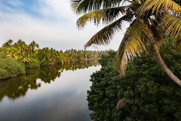 Vue du canal au coucher du soleil état du kerala, inde du sud Photo Premium