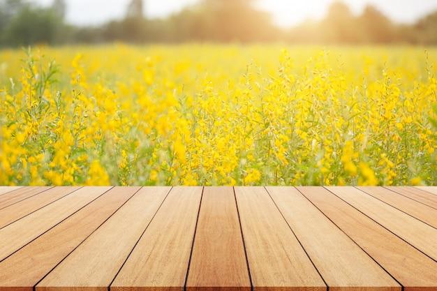 Vue du champ de chanvre jaune sunn ou crotalaria juncea dans le champ Photo Premium