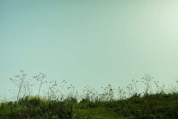 Vue du paysage au coucher du soleil Photo gratuit