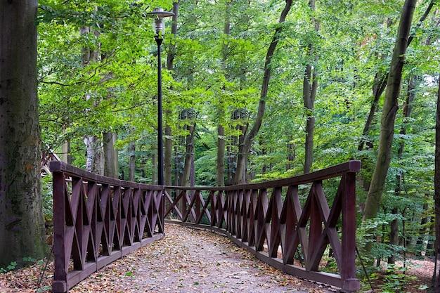 Vue du pont dans le parc paysager en été. Photo Premium
