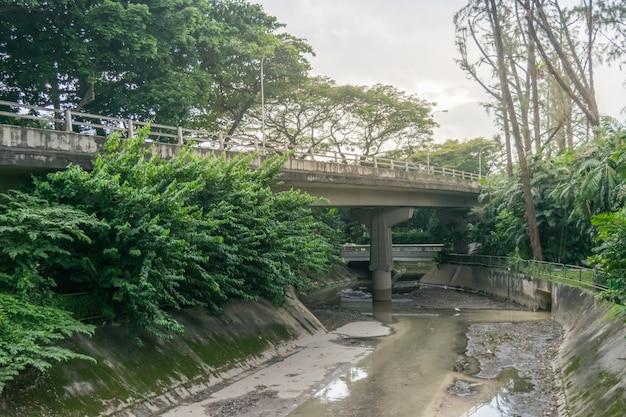 Vue du pont de la ville, le drainage de l'eau et de la forêt dans la ville de singapour Photo Premium