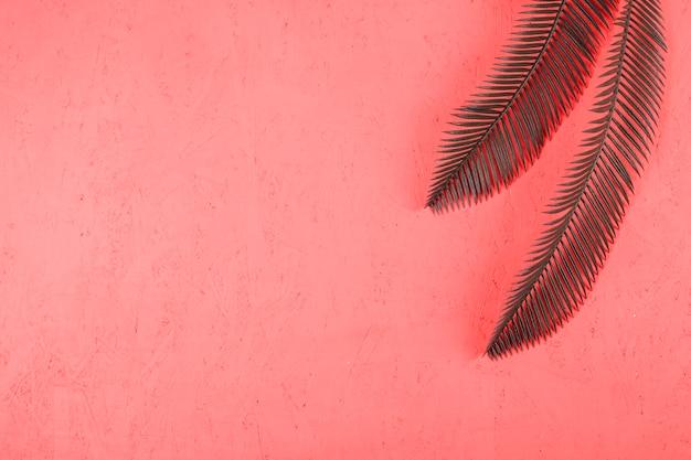 Une Vue En élévation De Deux Feuilles De Palmier Vert Sur Fond De Corail Texturé Photo gratuit