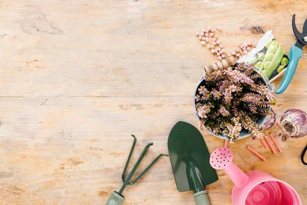 Vue élevée de l'arrosoir; outils de jardinage; plante en pot; oignon; des graines; et sécateur sur fond en bois Photo gratuit