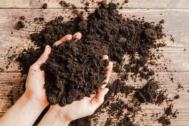 Une vue élevée de la main d'une personne tenant un sol fertile dans les mains sur le bureau Photo gratuit