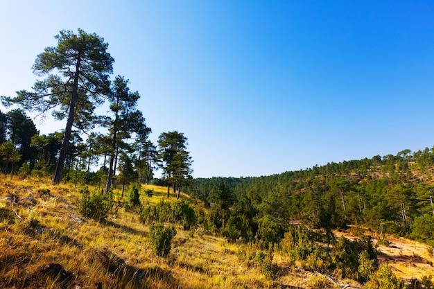 Vue Ensoleillée De Serrania De Cuenca Photo gratuit