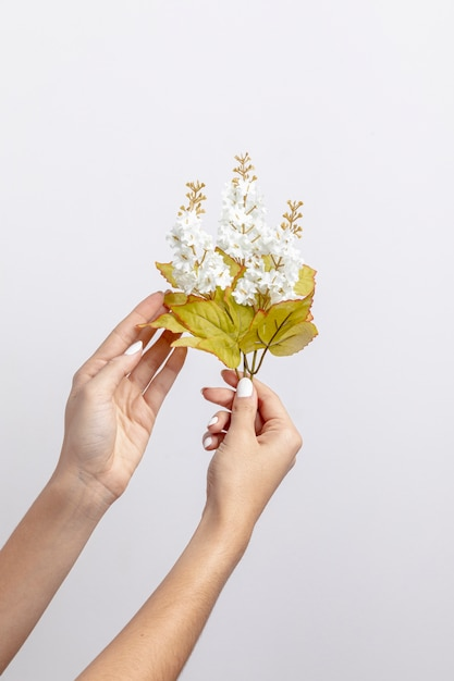 Vue De Face Des Mains Tenant Des Fleurs Photo gratuit