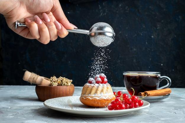 Une Vue De Face Petit Gâteau Aux Canneberges Rouges à L'intérieur De La Plaque Blanche Obtenir Du Sucre En Poudre Sur Le Gâteau De Bureau Léger Photo gratuit