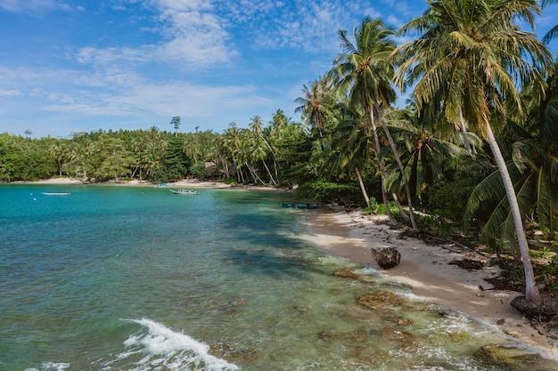 Vue Fascinante Sur La Côte Avec Du Sable Blanc Et De L'eau Claire Turquoise En Indonésie Photo gratuit