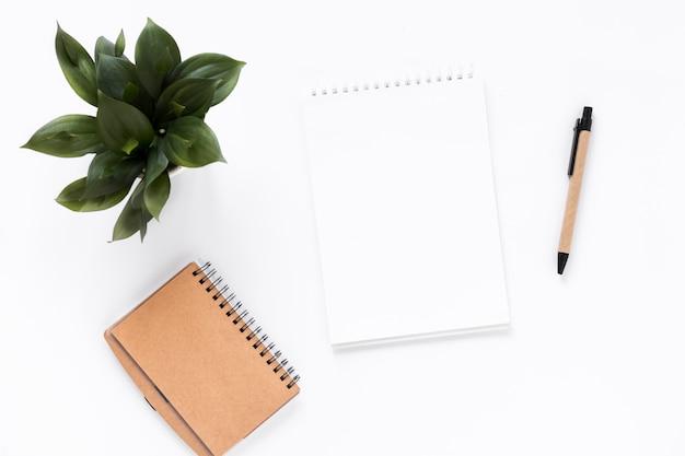 Vue grand angle du bloc-notes en spirale; journal intime; plante en pot et stylo sur fond blanc Photo gratuit