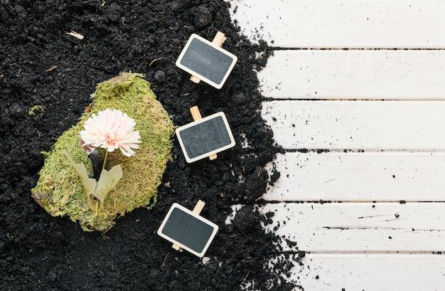 Vue grand angle de fleur sur le gazon avec une pancarte noire sur la terre sur un banc en bois Photo gratuit