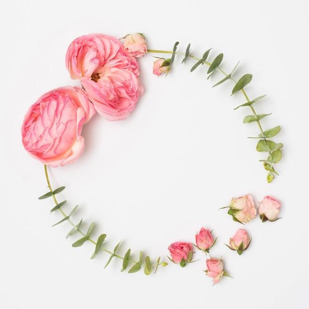 Vue grand angle de fleurs de pivoine et boutons de roses avec des feuilles d'eucalyptus Photo gratuit