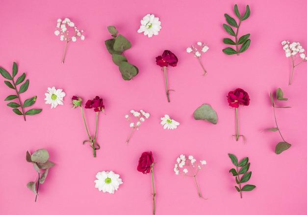 Vue grand angle de la rose rouge; fleurs de marguerites blanches; souffle de bébé et feuilles sur fond rose Photo gratuit