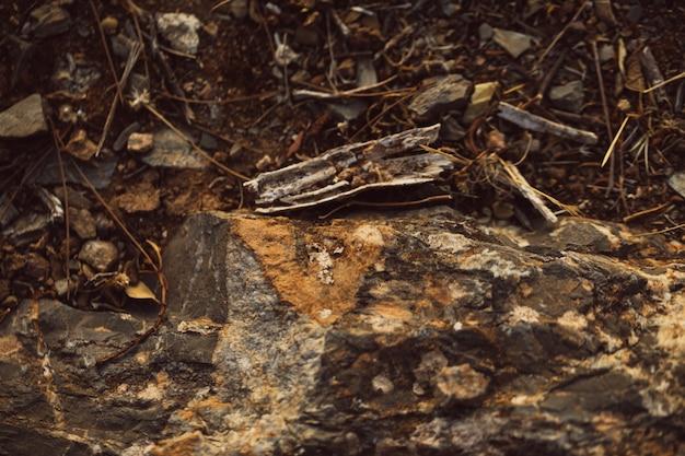 Vue haute de la terre et des pierres Photo gratuit
