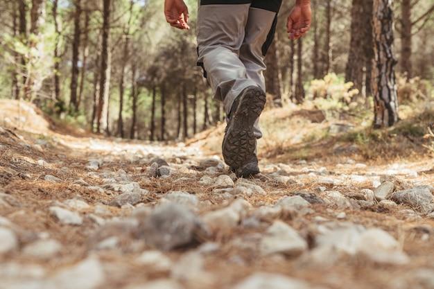 Vue Sur Les Jambes Du Randonneur Qui Marche Dans La Forêt Photo Premium