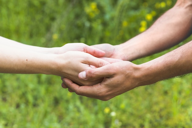 Vue latérale mains gardant dans le champ Photo gratuit