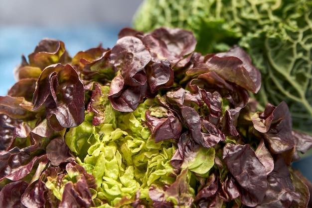 Vue de légumes verts frais Photo Premium