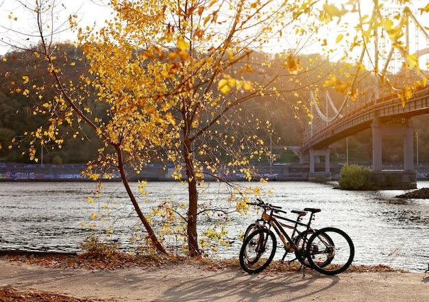 Vue magnifique sur la ville de kiev en automne Photo Premium
