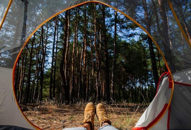 Vue de nuit de la forêt depuis la tente Photo gratuit
