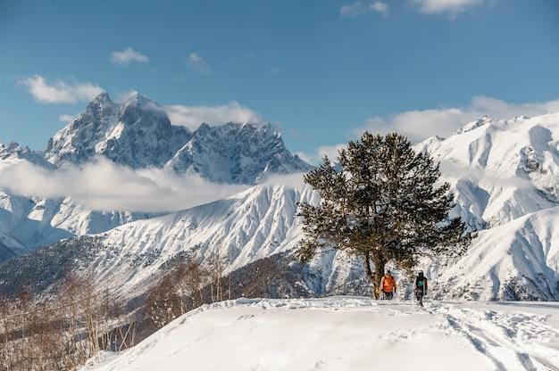 Vue panoramique des coureurs de snowboard debout près de l'arbre Photo Premium