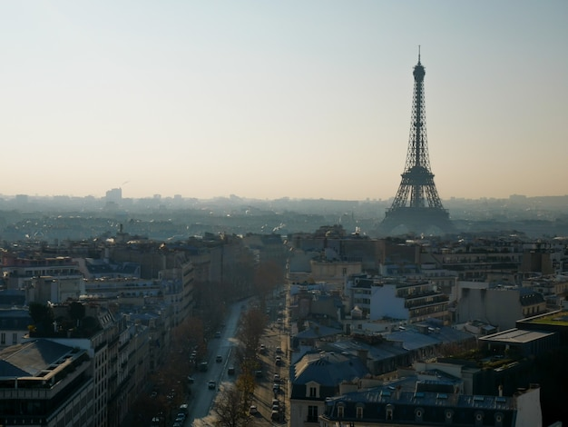 Vue Panoramique De Paris Avec La Tour Eiffel. Photo Premium