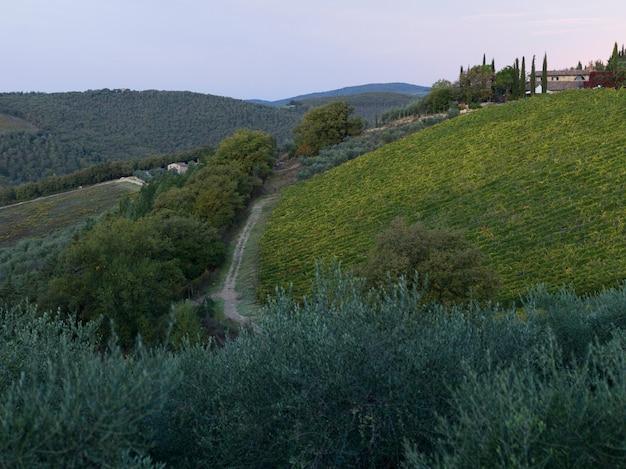 Vue panoramique, de, vignoble, à, village, dans, fond, toscane, italie Photo Premium