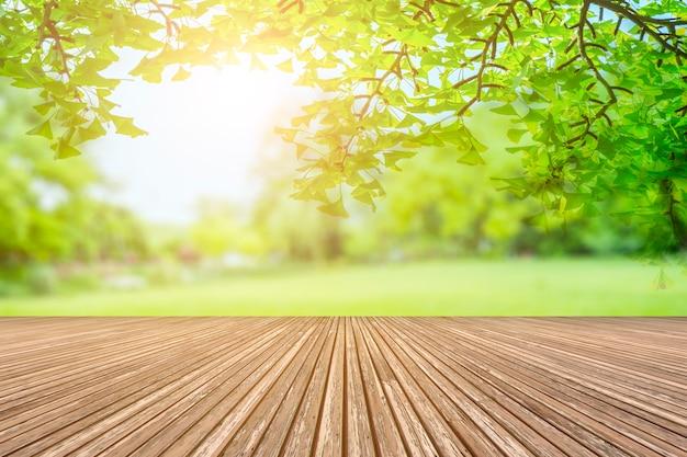 Vue sur le parc verdoyant Photo gratuit