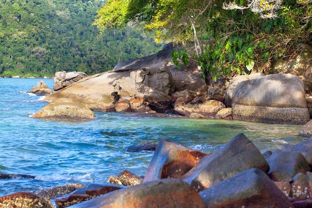 Vue De La Plage, La Mer Et La Forêt Par Temps Nuageux à Prainha Photo Premium