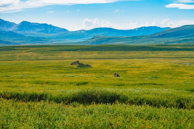 Vue spectaculaire des montagnes géantes sous le ciel nuageux. Photo Premium