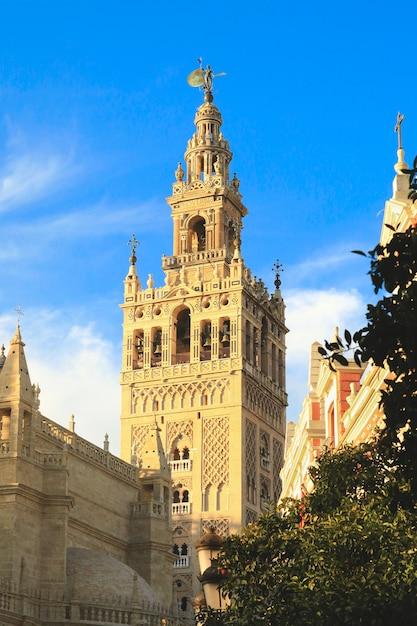 Vue de la tour giralda avec un ciel bleu Photo Premium