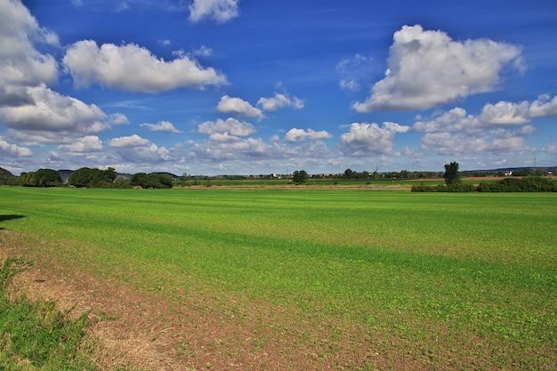 La vue sur la vallée de l'elbe en saxe, allemagne Photo Premium