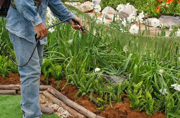 Workingman pulvérisant un insecticide dans le jardin Photo Premium